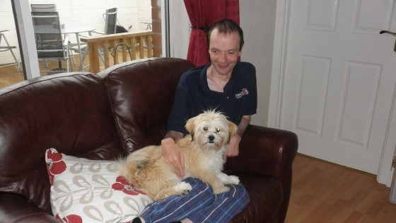 Are Lhasa Apso S Easy To Train